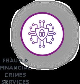 Fraud & Finnancial Crimes Services Icon