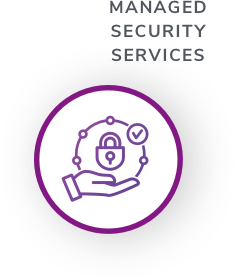 Managed Security Services Iconb